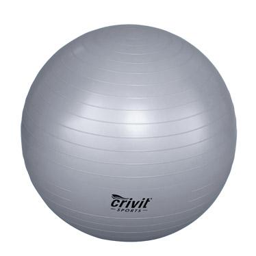 ballon de gym prix