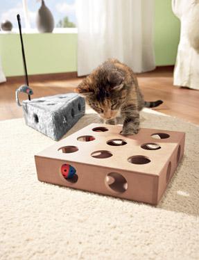 jouet chat dans une boite