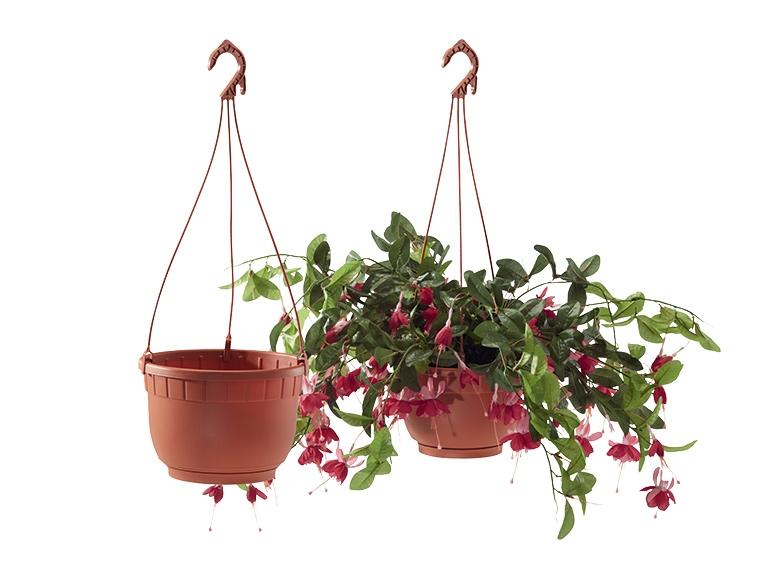 Jardini re ou pot s de fleurs lidl france archive - Jardinieres a suspendre ...