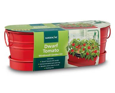 ... All In One Windowsill Garden Kit ...
