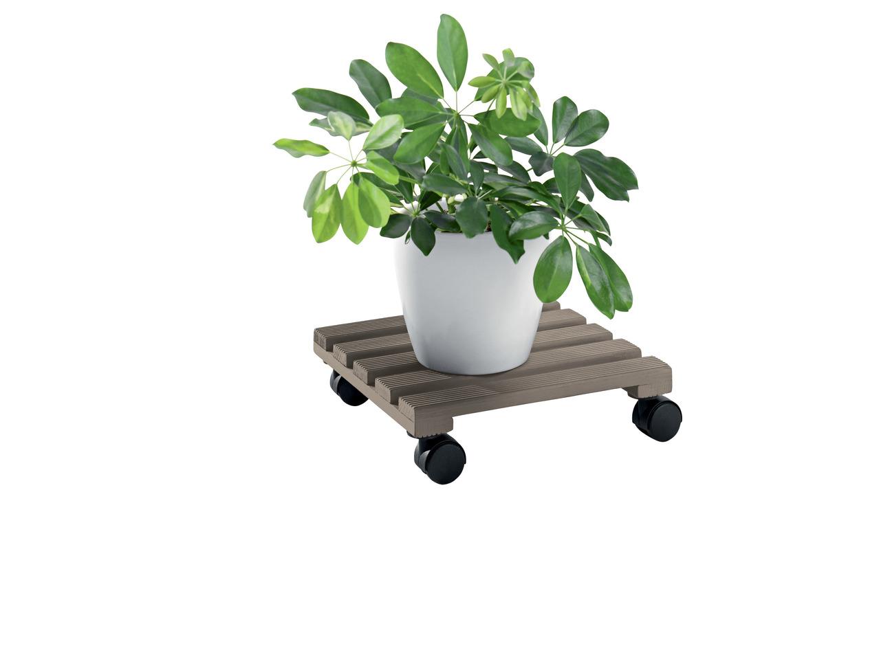 rullebræt til planter