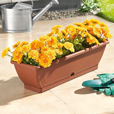Bac ou pot(s) pour fleurs