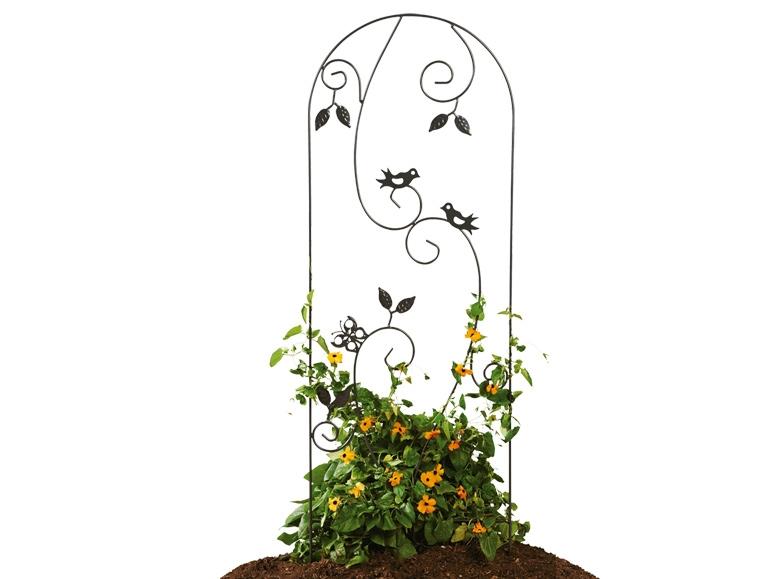 treillis pour plantes grimpantes lidl france archive. Black Bedroom Furniture Sets. Home Design Ideas