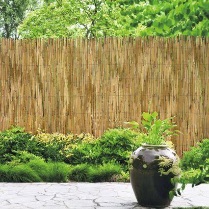 Clôture de jardin en roseau - Aldi — France - Archive des offres ...