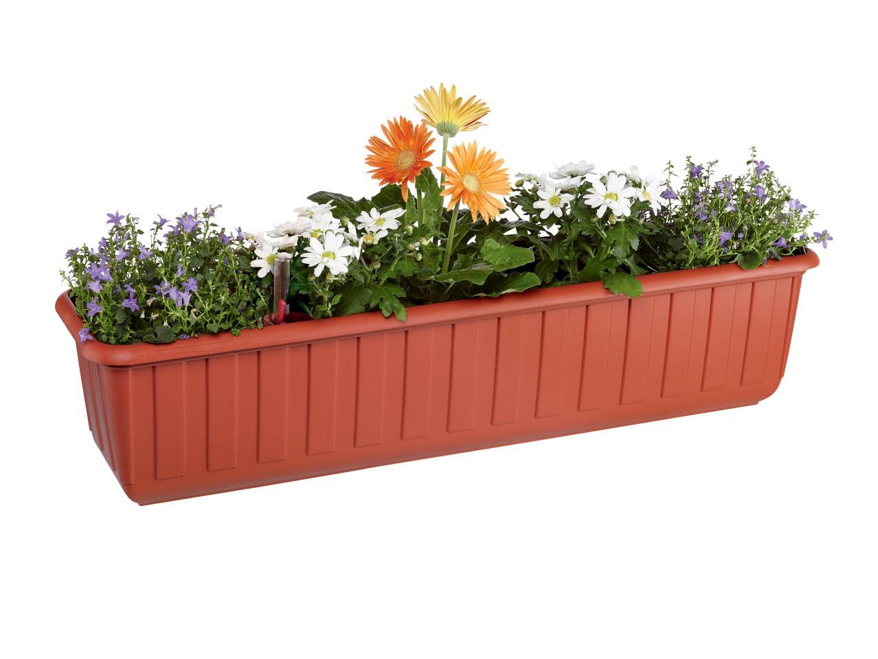 jardini re avec niveau d 39 eau lidl france archive des. Black Bedroom Furniture Sets. Home Design Ideas