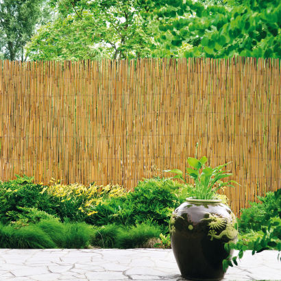 Cl ture de jardin en roseau aldi france archive des offres promotionnelles for Cloture jardin roseau