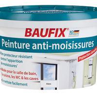 Travaux 10 d c 2015 lidl france archive des for Peinture baufix